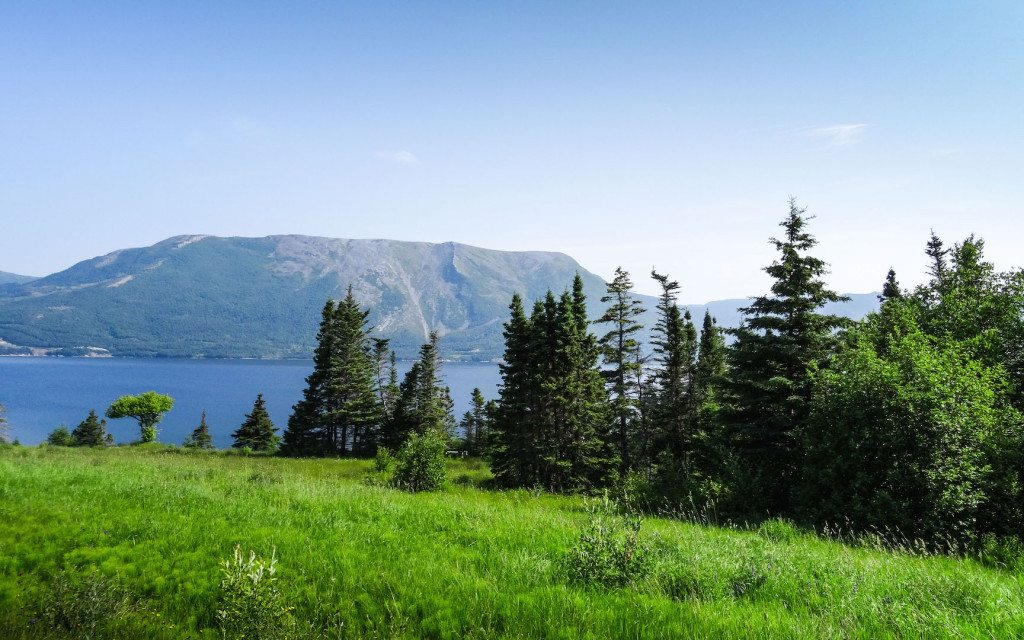 Gros Morne and Cornerbrook Campground_