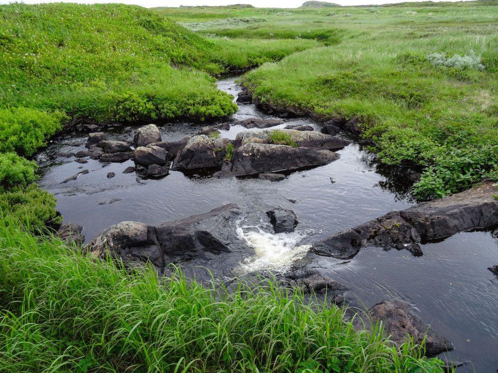L'Ans aux Meadows