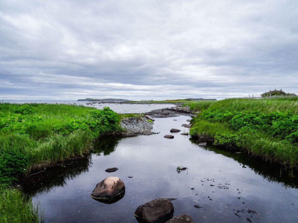 L'Ans aux Meadows Viking Settlement