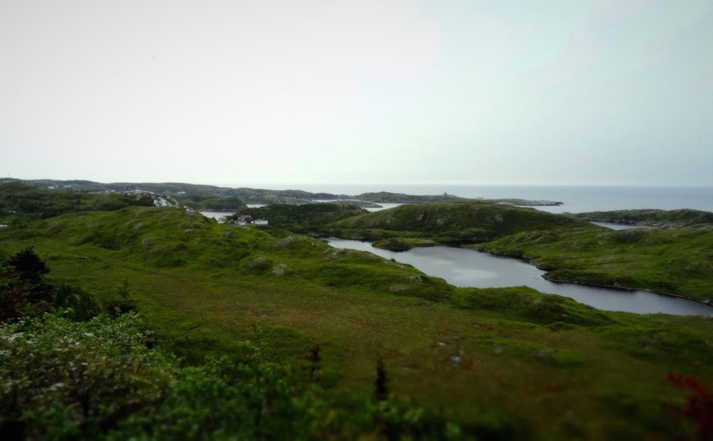 Lookout at Rose Blanche-Harbour le Cou, Newfoundland
