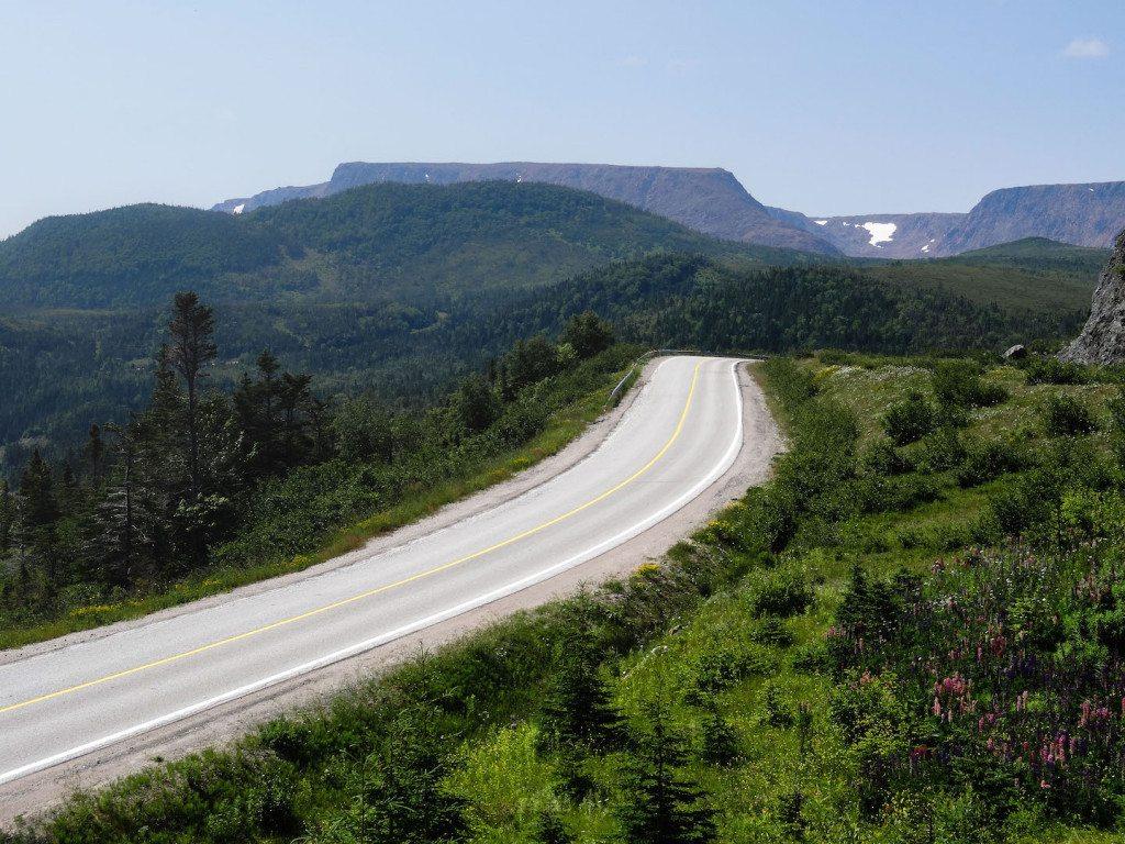 Newfoundland Highway 431