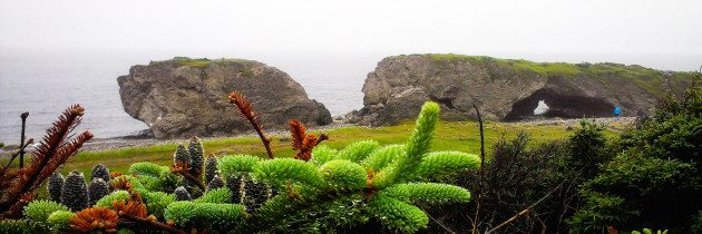 Wet Feet and Riding to St. Barbe Newfoundland
