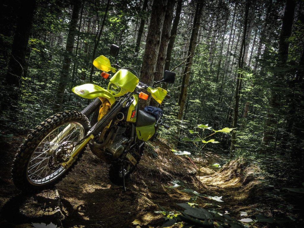 Suzuki D650 Limerick Forest Trail