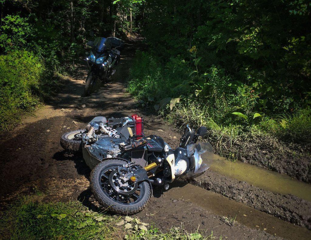 Big Ethel rolling in the mud