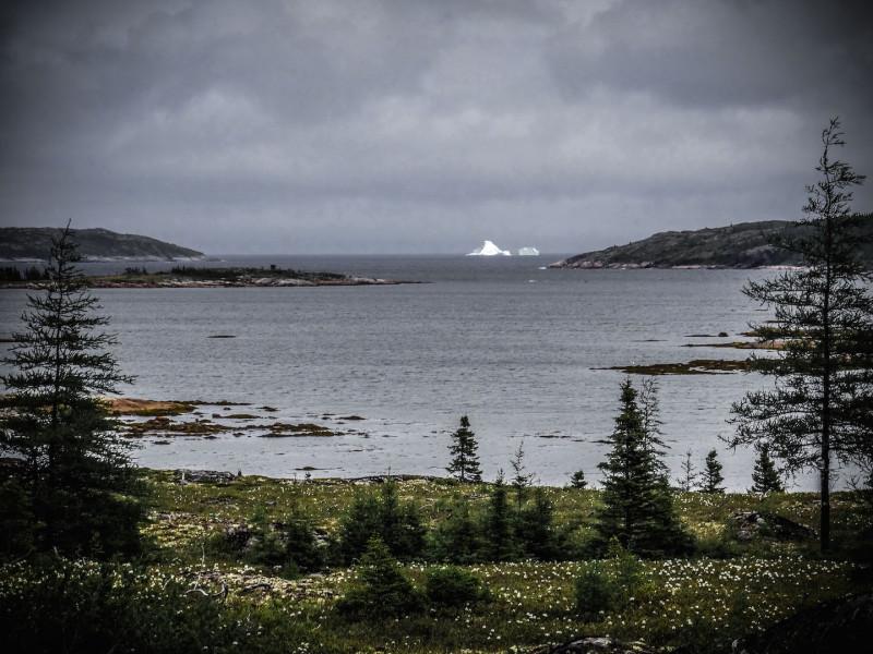 Labrador iceberg