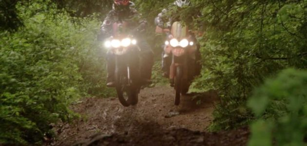 Triumph Tiger 800XC ADV Motorcycles In The Rainforest