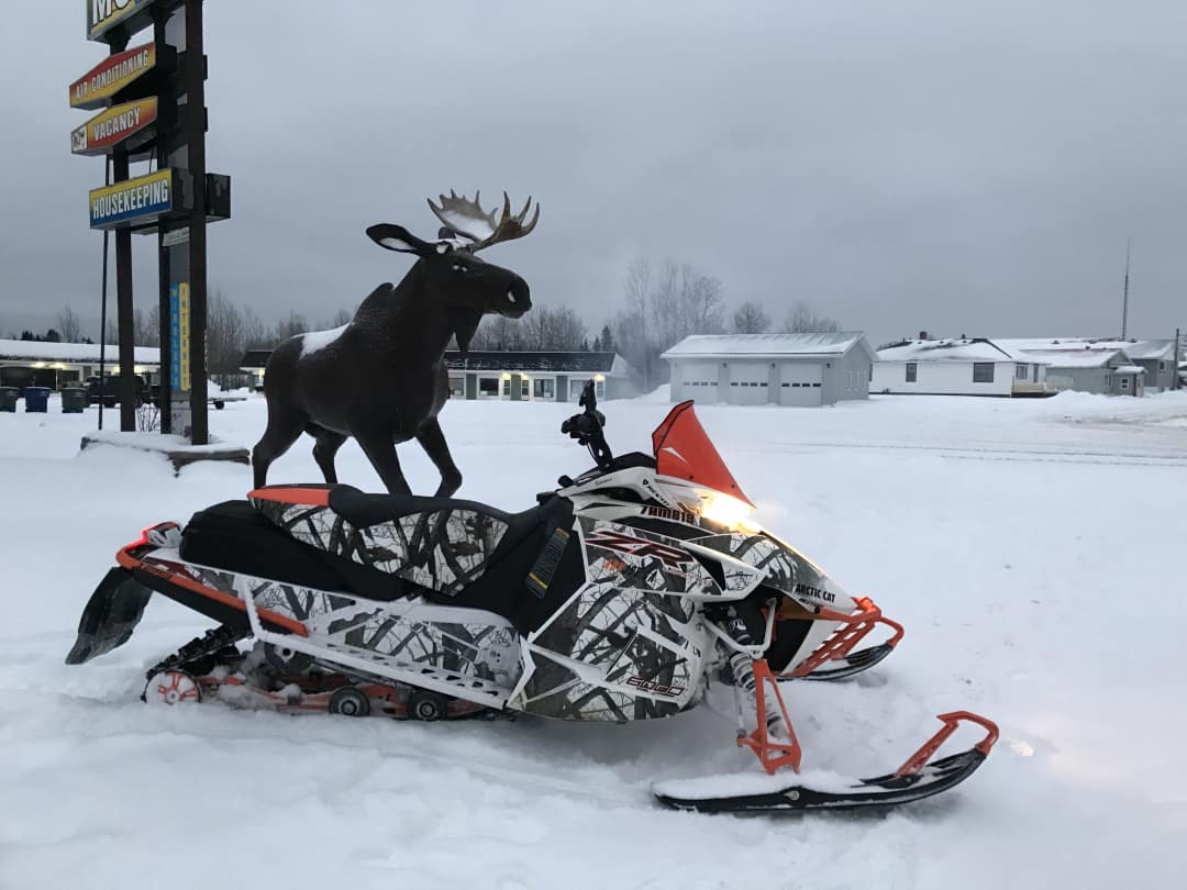 The Moose at the Moose Motel in Smooth Rock Falls Ontario