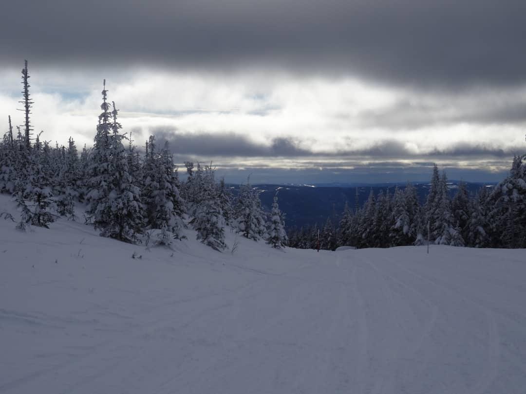 Snow covered trails above Carleton-sur-Mer, Quebec