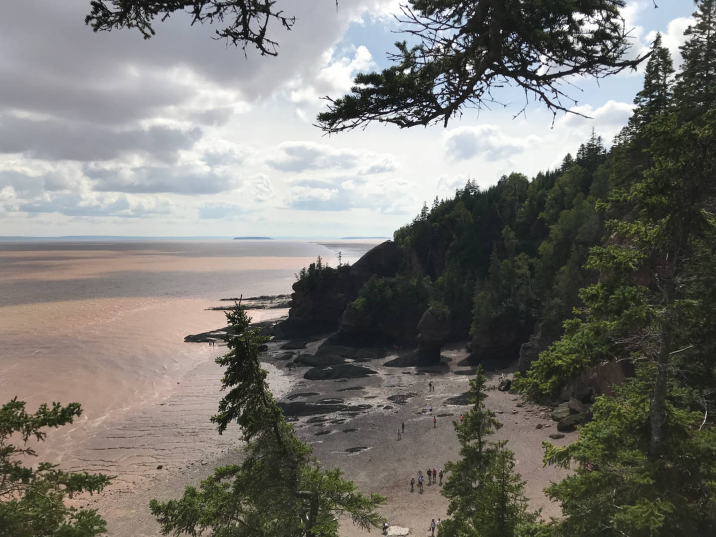 photo of the view from the lookout at Hopewell Rocks, Bay of Fundy