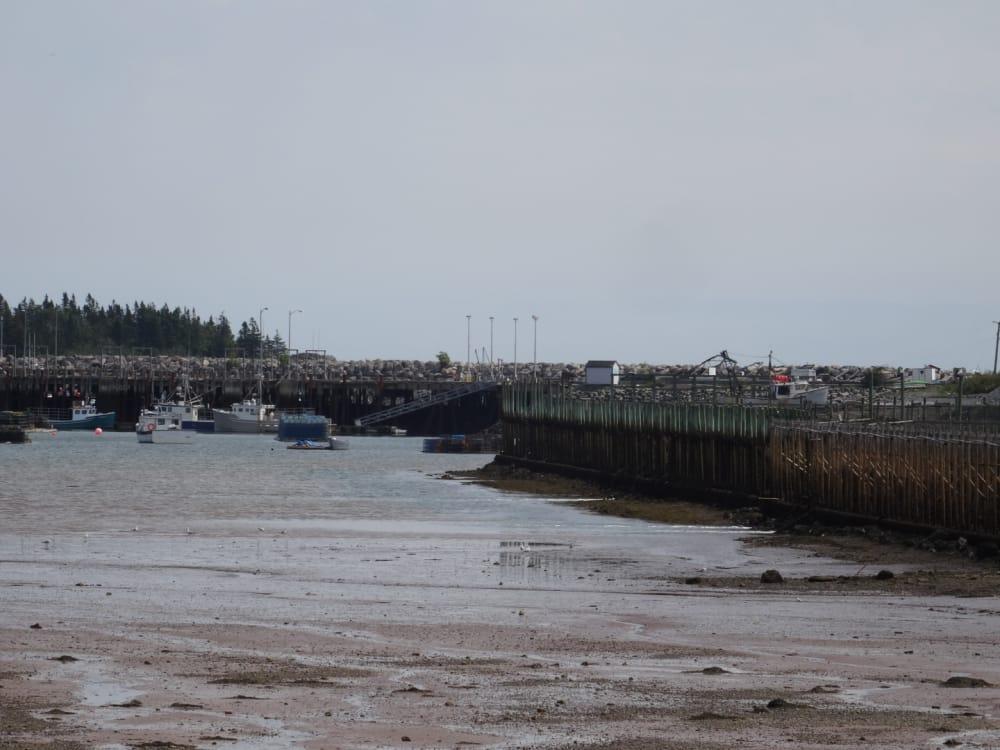 Dipper Harbour New Brunswick at low tide