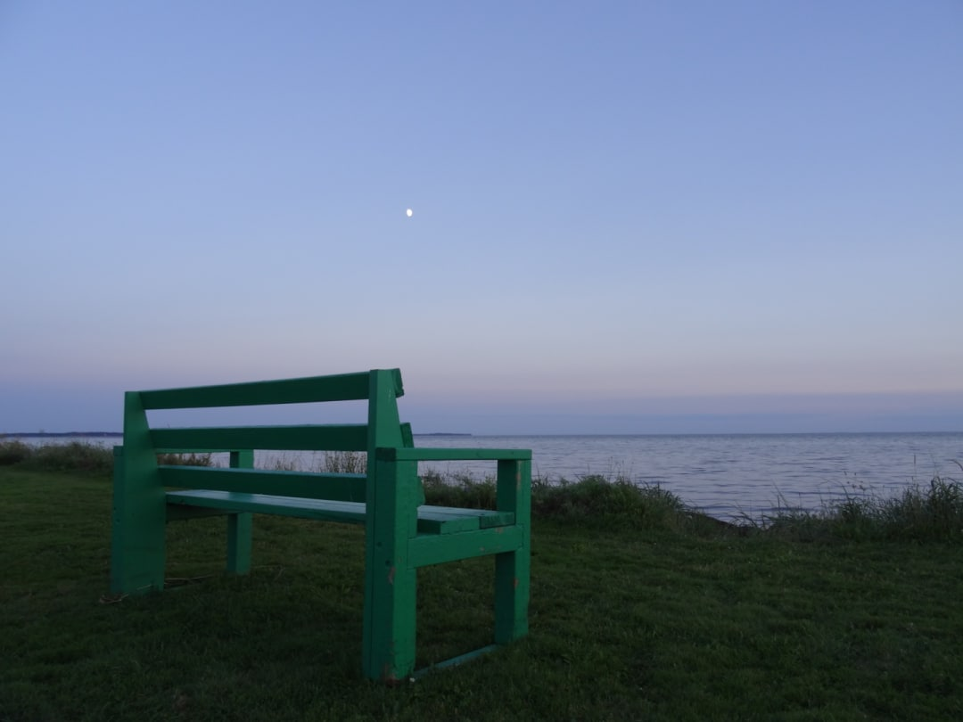 An evening moon rising above a green bench at Linkletter Provincial Park