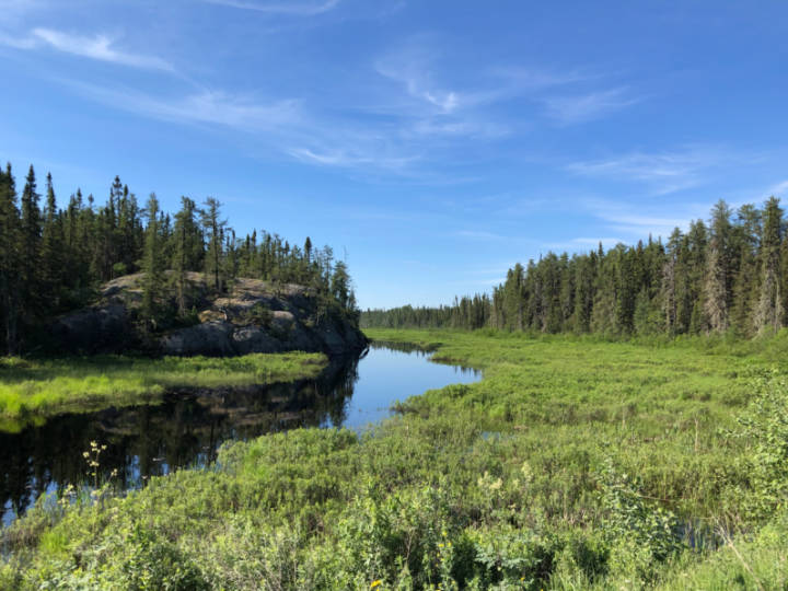 A photo of a small river flowing through northern Ontario forest land