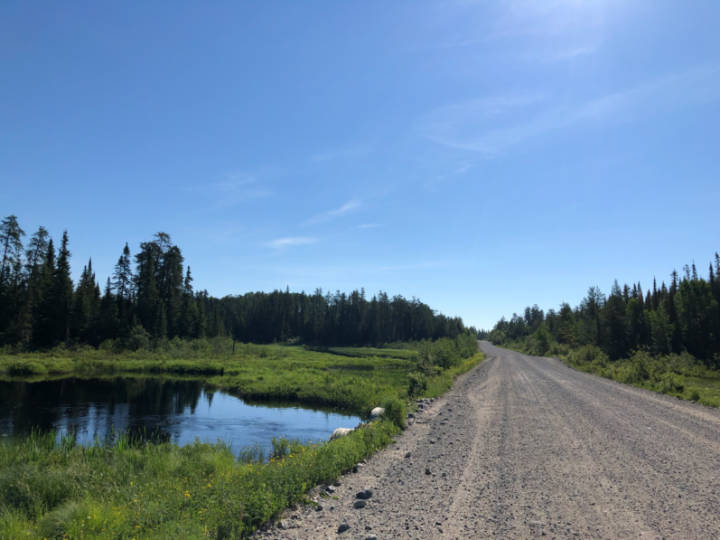 a photo of a pretty gravel road through dense forest with a small pond